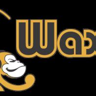 WaxDj_logo