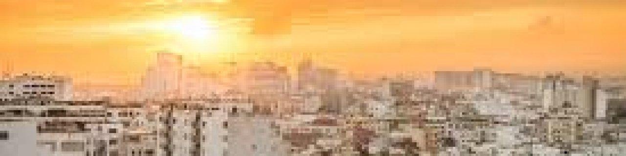 hazare