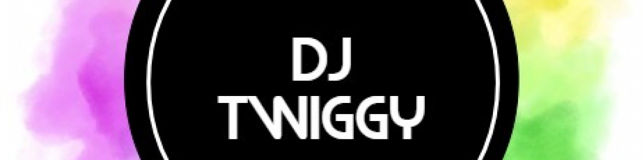 dj twiggy entertainment
